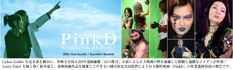 PinkD Working Report